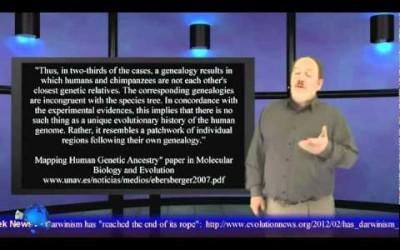 Goin' Ape! Genesis Week, episode 12