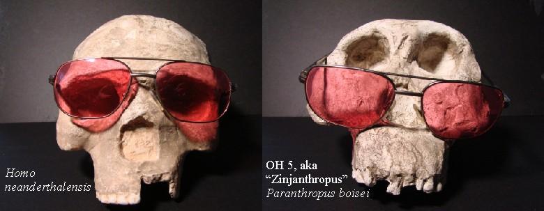 oculustest1