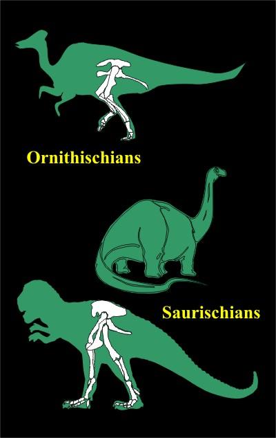 ornisaur